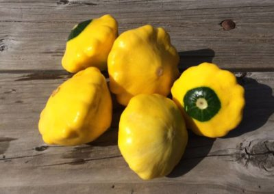 ~ Summer squash are delicious grilled.