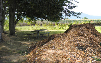 Effective Use of Mulch